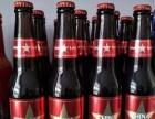 福建波克啤酒招商加盟
