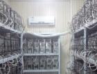 鼎盛科技IT服务