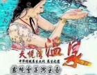 岳西天悦湾温泉一日游12.12特价