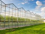 建阳光板温室要多少钱,湖北阳光板玻璃温室