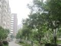 幸福筑家阿卡精装2房步行五到地铁随时看房超低价格诚心卖房