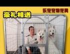 家里不让养狗,出售狗笼及狗床