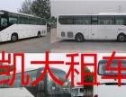 巴士公司丨17-55座商务接机.庆典包车服务