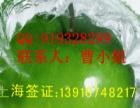 韩国签证办理上海韩国旅游签证办理韩国签证加急办理