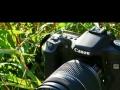 低价出售佳能50d单反相机