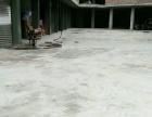 308省道花滩商贸市场榜 仓库 1500平米米