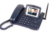 深圳蓝硕LS980 网络无线电话 无线商务电话 无线固话 热卖促