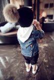 精品韩版童装特价批发,春款童装上新支持实体看货