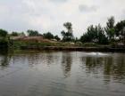鱼塘出租汤岗子 祥家村 其他 10000平米