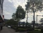 街口中心区 江埔镇小海105国首旁 住宅底商 300平米