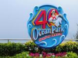 玩转不可能乐享港澳旅游四天三晚海洋公园夜游维港只需688元