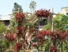 高级婚礼策划师培训、宴会设计培训到美美卓越婚礼学院