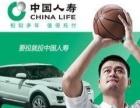中国人寿保险优惠多多,交强,商业险都办