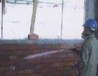 东莞防治白蚁中心,专业杀虫灭鼠灭白蚁多镇设有工程部