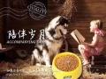 出售伊萨陪伴岁月猫粮,狗粮