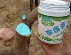 果树修剪后快速恢复防腐用快活林果树愈合剂