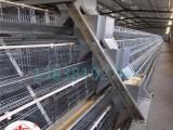 厂家直销 宏伟 层叠式全自动上料机 养鸡设备