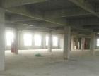 经开区新建4800平米框架厂房仓库出租