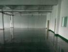 港口原房东标准楼上1000平米带办公室厂房出租