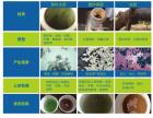 泉州自来水管清洗公司|专业的自来水管清洗诺康祥汇提供