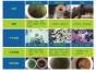 泉州专业的自来水管清洗公司是哪家具有价值的自来水管清洗