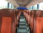 朝阳35-55座豪华大巴车出租,包车接送