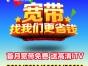 全广州中国电信100M真光纤宽带 99安装费上门受理