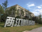 企业独享两江新区政策+提供厂房+商务楼宇