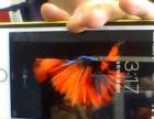 玫瑰金 苹果 iPhone6sPlus 128GB