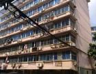 南京东路 青山湖公安小区 3室 2厅 142平米 整租