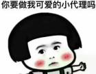 上海国际期货 可线上 诚招代理