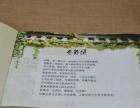 来宾毕业10周边同学聚会活动照片书设计制作相册定制