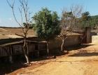 文山干塘子 厂房 2000平米