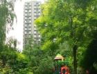 中信城三期低价高品质楼盘 房屋大小任您选泽 超值