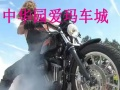 摩托车 酷车 跑车 随便选 总有一个属于你