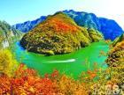 焦作5A景区-青天河观赏红叶一日游 重阳节特价