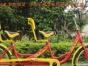 折叠车 山地车 单车 变速车 各种各样的自行车 全市最低价
