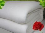 8斤现卖现做千层无网纯棉被 被芯 被褥