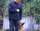 训犬 军犬 警犬训练 广州宠物犬训练 狗狗训练