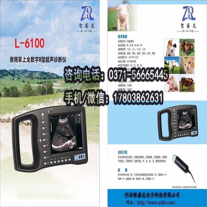 宠物,猪牛羊用B超机L-6100
