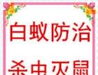 黄埔区专业杀虫灭鼠公司,黄埔灭鼠杀虫找广州康安公司