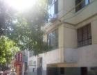 共和街中段 五楼 三居室 简装修 标准户型 南北通透