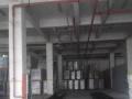 康桥工业园一楼厂房500平出租,层高6米