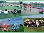 深圳特色乐湖生态园真的是值得一来的农庄团建野炊活动基地
