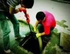江岸区市政管道疏通 化粪池清掏 隔油池清理
