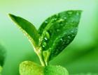 广州爱俸茶加盟流程是什么 爱俸茶加盟条件有哪些