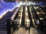 深圳电梯安全管理员证在哪查询证书样版