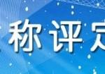 天津经济师 会计师 建筑师 通信师 电气工程师,市政,职称