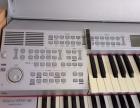 吟飞 RS460双排键电子琴(晓雯音乐学校专用)