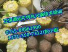 牛肉火锅加盟,潮汕牛肉丸火锅加盟,牛肉火锅的做法